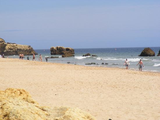 Elma Apartments: Local Beach
