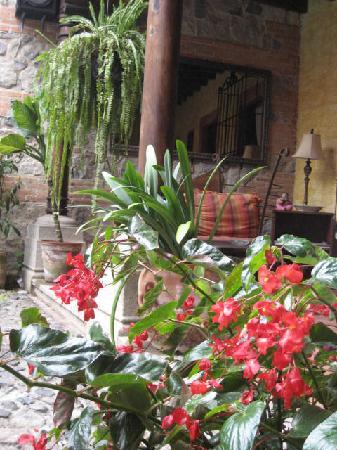 Hotel Palacio de Dona Beatriz: Jardín