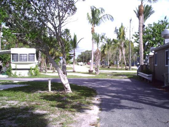레드 코코넛 RV 파크 이미지