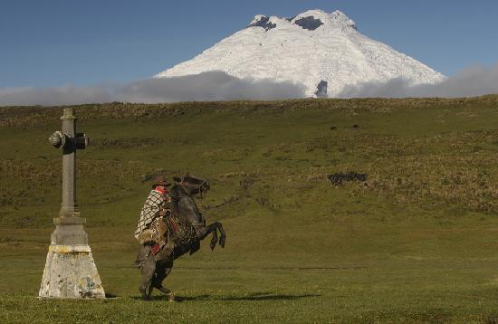 Cotopaxi Province, Ekwador: Yanahurco the ranch in ecuador