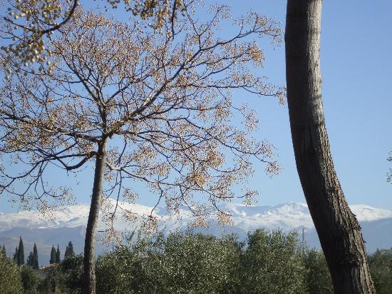 Funky Granada: Le printemps