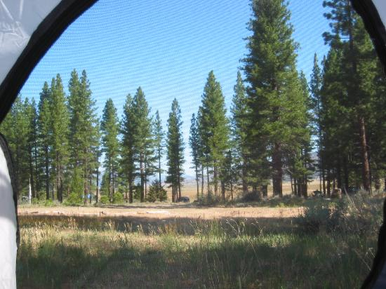 Sierra Hot Springs Resort & Retreat Center: View from my Tent