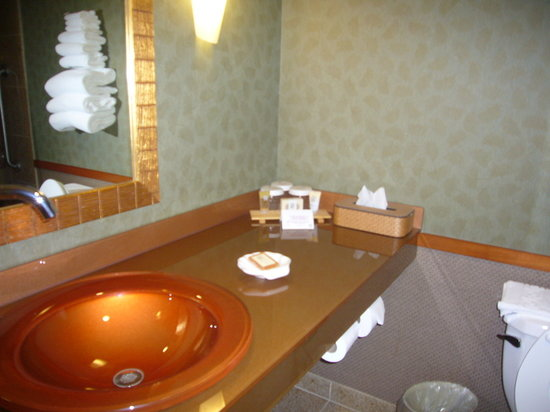 Wheeling Island Hotel Casino Racetrack: bathroom #312