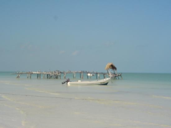 Holbox Hotel Casa las Tortugas - Petit Beach Hotel & Spa: spiaggia davanti all'hotelito