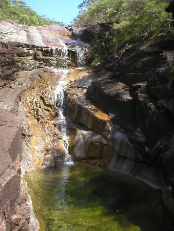Hinchinbrook Island: swimming hole mulligan falls