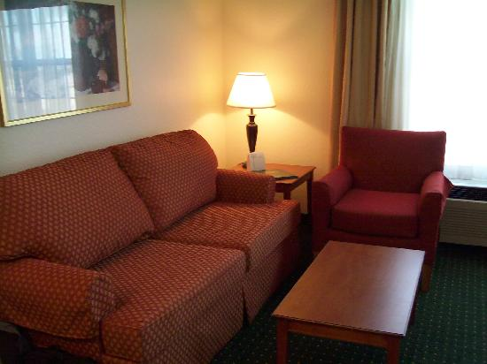 TownePlace Suites St. Petersburg Clearwater: Hotel sofa