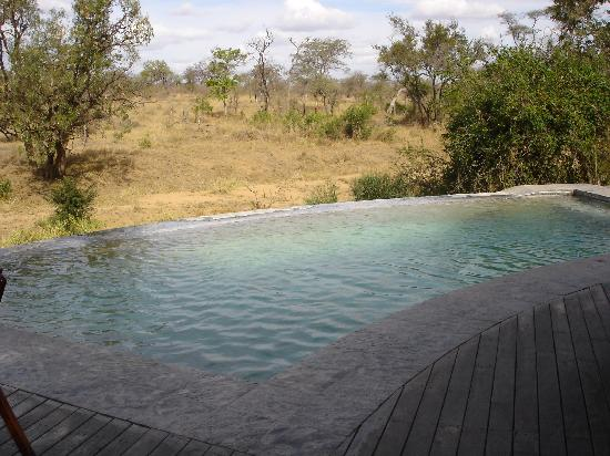 Royal Legend Safari Lodge & Spa: Lodge pool where you can see the animals