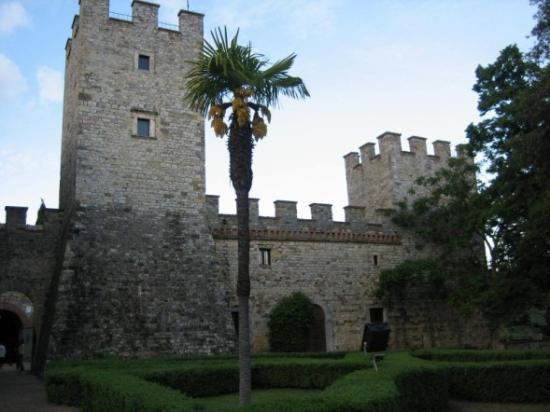 Castello di Modanella: modanella