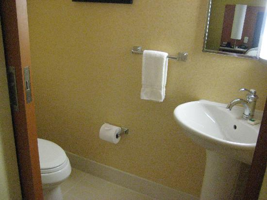 SpringHill Suites Albany-Colonie: toilet room