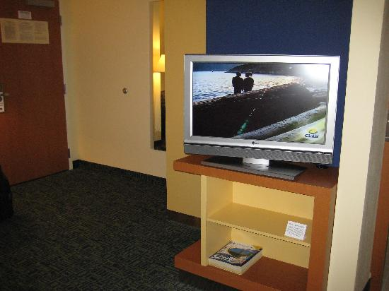 SpringHill Suites Albany-Colonie: flat screen