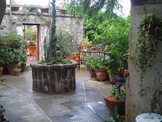 Orchid Corner B&B: Courtyard