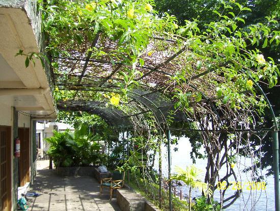 Duka Bay Resort: Outside the room