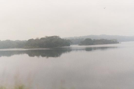 Panama Canal Railway: lake gatún.