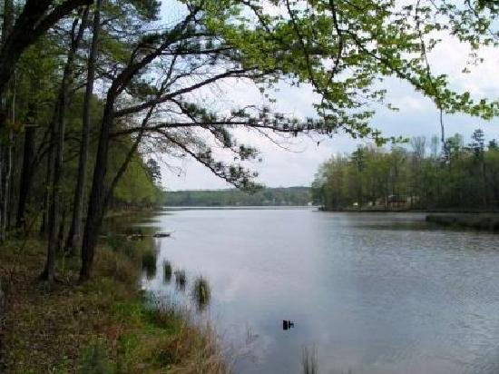 Great Fishing Picture Of Lake Greenwood State Park
