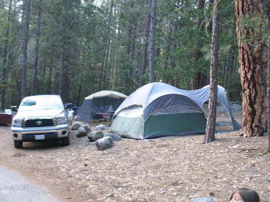 Wawona Campground : picture of our campsite #98