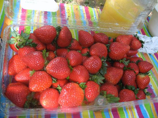 Little Talbot Island State Park: the best strawberries ever from the market on Amelia Island