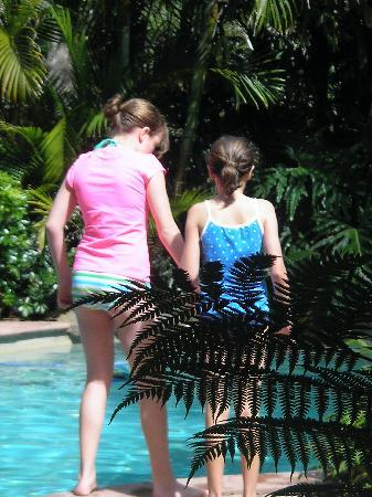 Narrows Escape Rainforest Retreat: Swimming in the pool