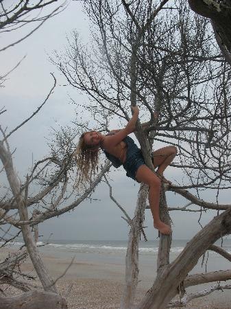 Little Talbot Island State Park: climbing a skeleton tree