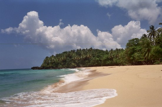 Playa Grande : Beautiful scenery