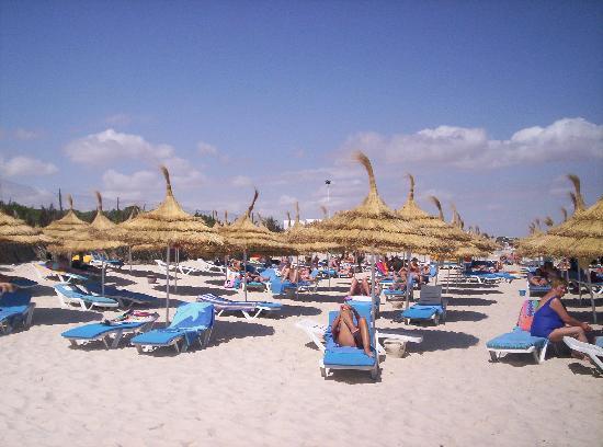 One Resort Monastir: acces direct a la plage tjs propre