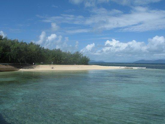 Green Island Resort: Beach from jetty (busy??)