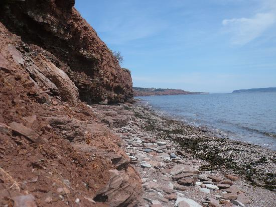 Aux jardins de l'anse : La plage des Agathes