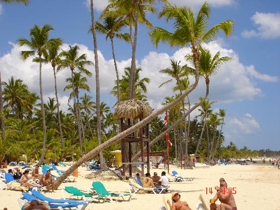 Grand Bahia Principe Turquesa: Palme simpatiche