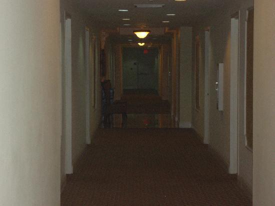 Shamrock Coral Gables: hallway