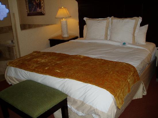 Laguna Brisas Hotel: chambre