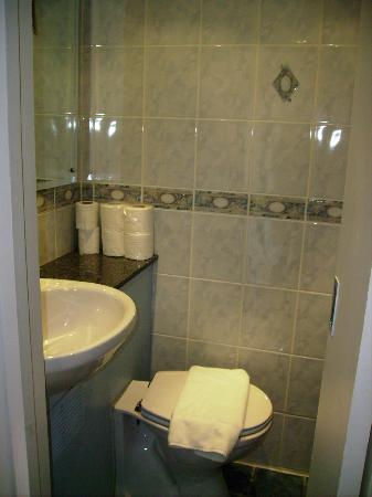 Westbury Hotel Kensington: en suite toilet