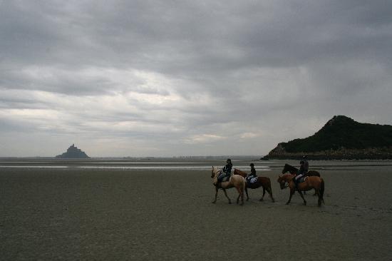 Centre equestre La Taniere: the group of riders
