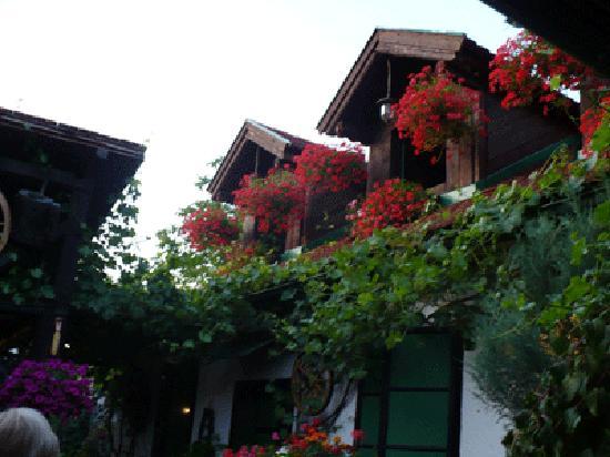 Slavonski Brod, Croatia: Giardino interno del Locale