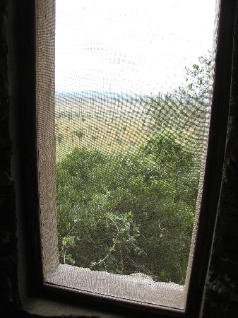 Boundary Hill Lodge: View from toilet