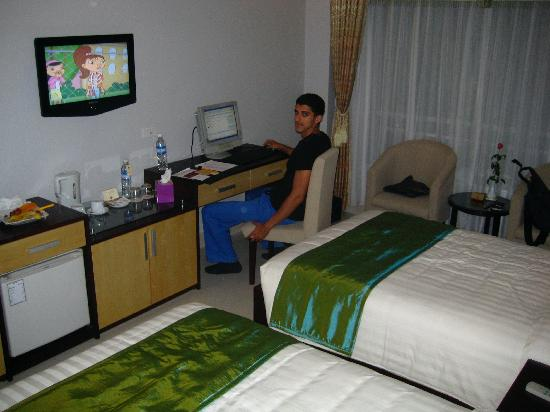 Hanoi City Palace Hotel : checking some email, with the flat screen on