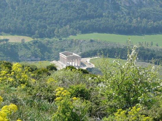 Calatafimi-Segesta, Italie : Il Tempio di Segesta