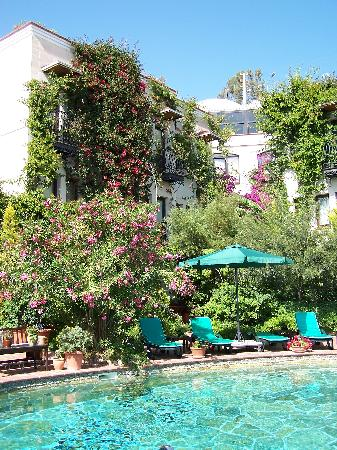 El Vino Hotel & Suites: lush pool and grounds