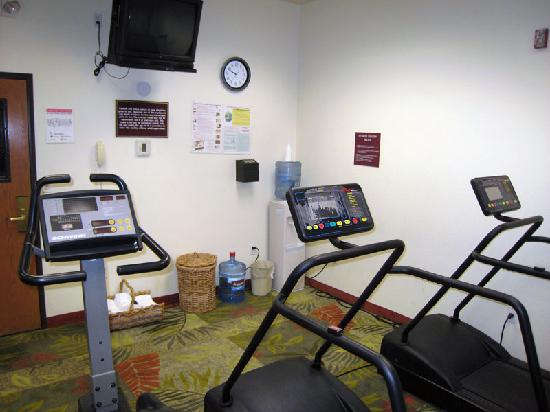 Holiday Inn Express Hotel & Suites: Gym