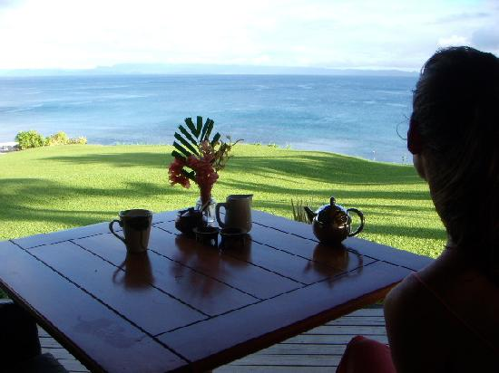 Taveuni Island Resort & Spa: The view from breakfast, liunch and dinner!