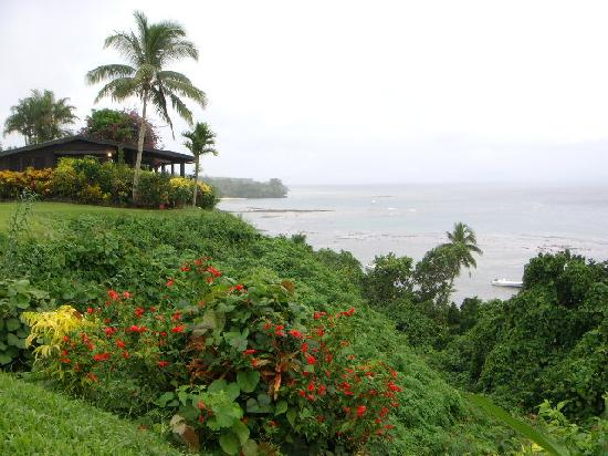 Taveuni Island Resort & Spa: A bridge on one of our hilkes!