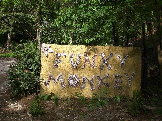 Funky Monkey Lodge: Seashell Entrance Sign