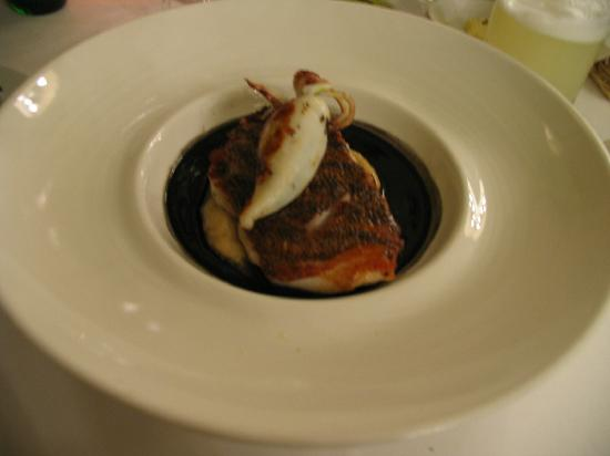 Fish with squid ink sauce picture of rafael lima for Squid fish sauce