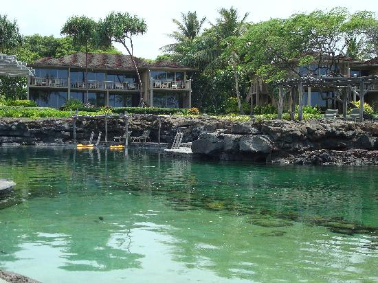 Four Seasons Resort Hualalai: kings pond