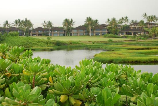 Four Seasons Resort Hualalai: grounds