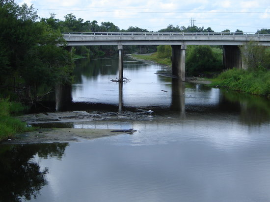 ‪فلوريدا: Alligator Peace River‬