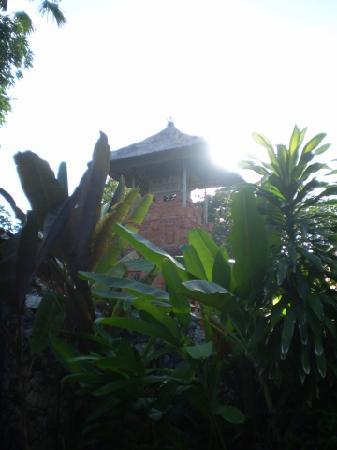 Landscape - The Pavilions Bali: Bali Pavilions