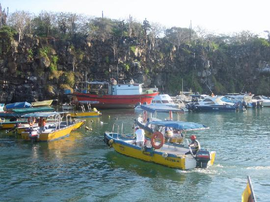 Finch Bay Galapagos Hotel: Water taxis - Puerto Ayora