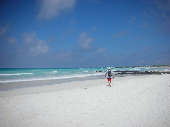 Finch Bay Eco Hotel: Tortuga Bay playa