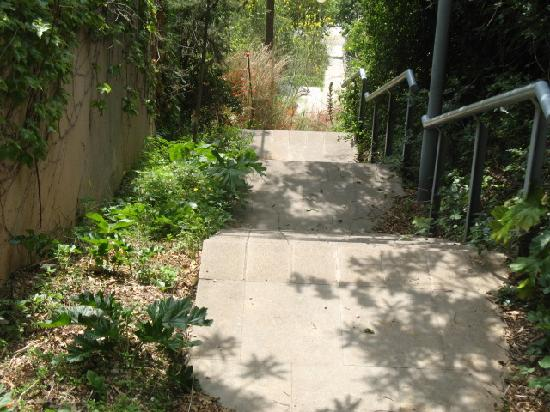Anita's Bed & Breakfast: staircase down Mt Tipidabo