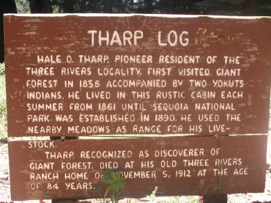 Giant Forest: Tharp's Log information sign