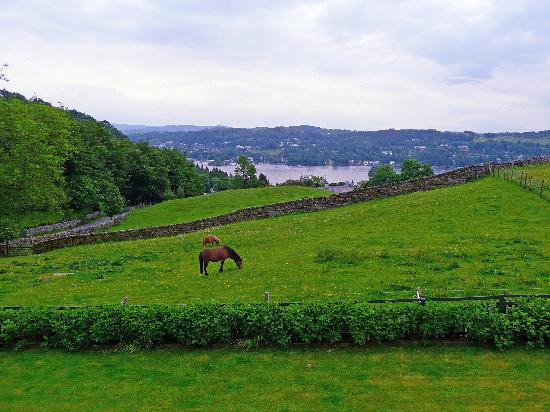 Hawkrigg Guest House: View from the B & B